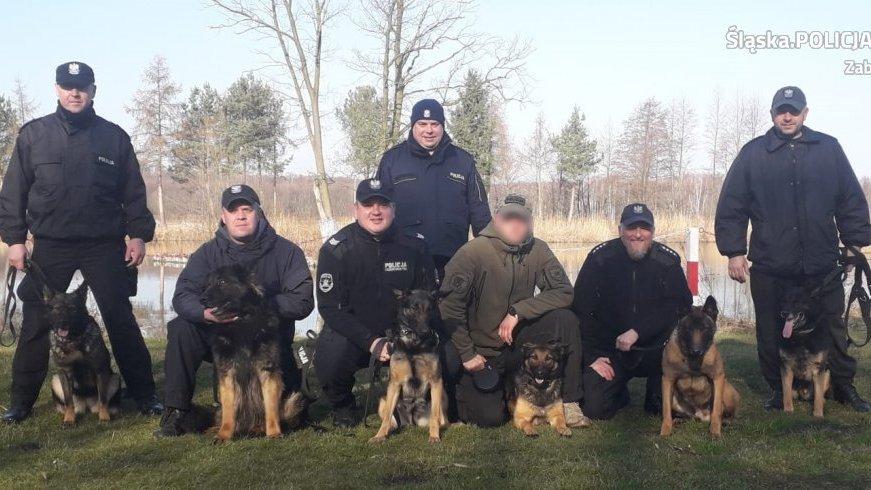 Diana się szkoli! Policyjny pies z zabrzańskiej jednostki doskonali umiejętności