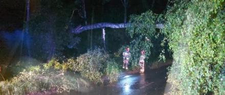 70 interwencji, zalane piwnice, posesje i połamane drzewa – to skutki nawałnicy w Zabrzu