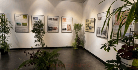 Muzeum Miejskie zaprasza na wystawy
