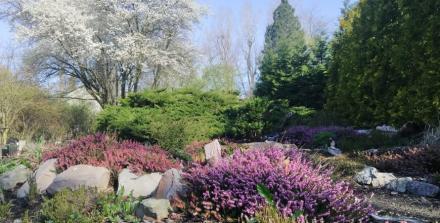 Doceniono działania proekologiczne Miejskiego Ogrodu Botanicznego